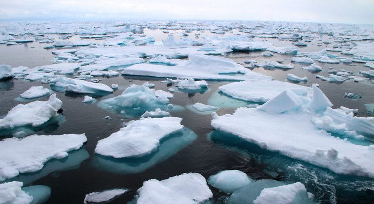 Plastic Litter taints the sea surface, even in the Arctic