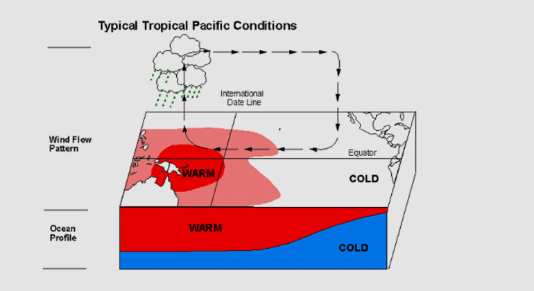 El Niño Expected to Strengthen Further: High Impacts, Unprecedented Preparation
