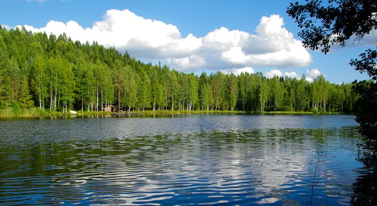 Seen erwärmen sich weltweit