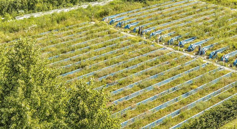 UFZ / André Künzelmann | Die Wissenschaftler des UFZ in Leipzig nutzen eine Experimentalanlage aus 47 Fließrinnen, um die Effekte von Pflanzenschutzmitteln auf naturnahe Ökosysteme zu quantifizieren und ihre Modelle zur Risikobewertung zu validieren.