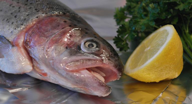 Thai Union Commits to 100% Sustainable Tuna