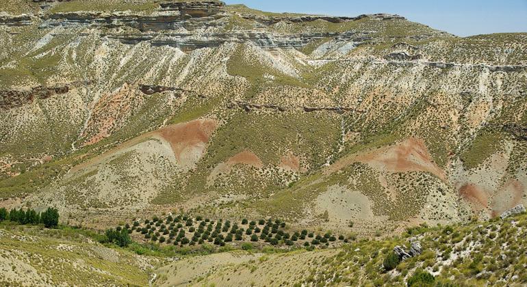 pixabay.com | jackmac34 | Bodenerosion im gigantischen Ausmaß als Folge jahrelanger Monokultur und industrieller Landwirtschaft.