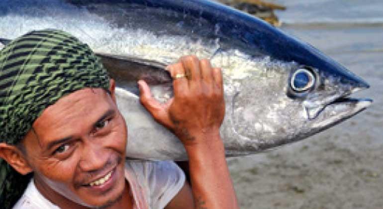 WWF | WWF Einkaufsratgeber: Fische und Meeresfrüchte 2016
