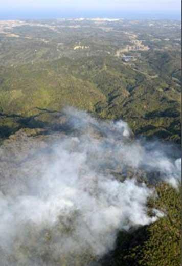 Kazuhiko Kobyashi | Neue radioaktive Verseuchung durch Waldbrand in Japan