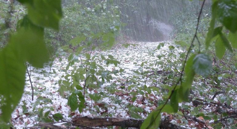 Dauerregen in Deutschland: Wie können wir vorsorgen?