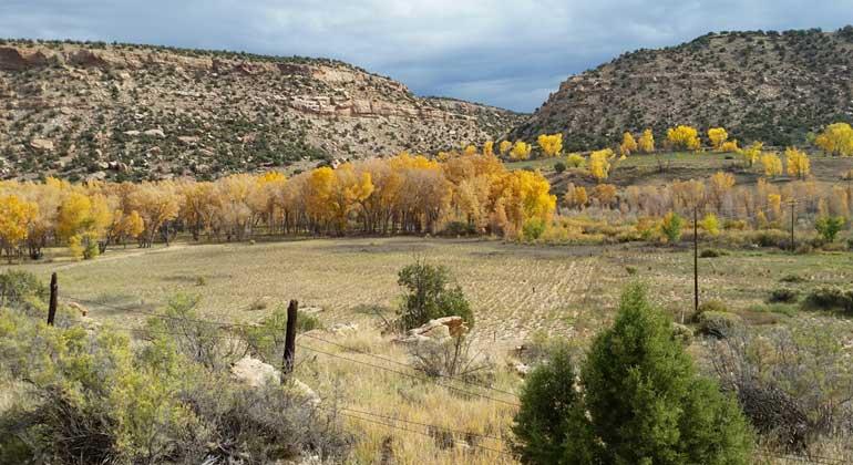 news.stanford.edu | John Bargar | Überflutungsgebiet des Colorado River