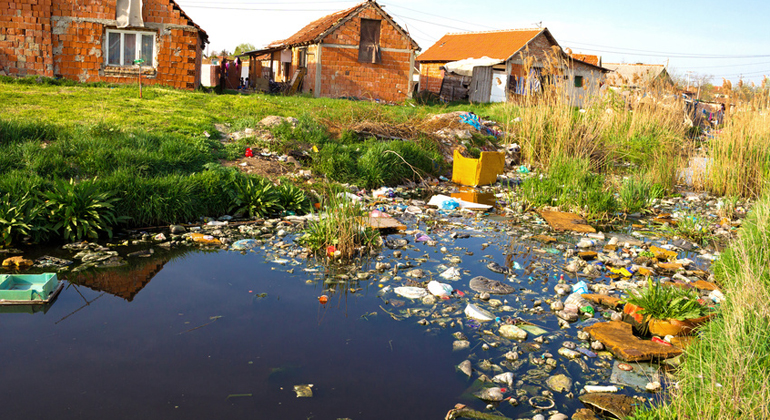Fotolia.com | overcrew | Besonders Plastikmüll ist in Meeren und Flüssen ein Problem.