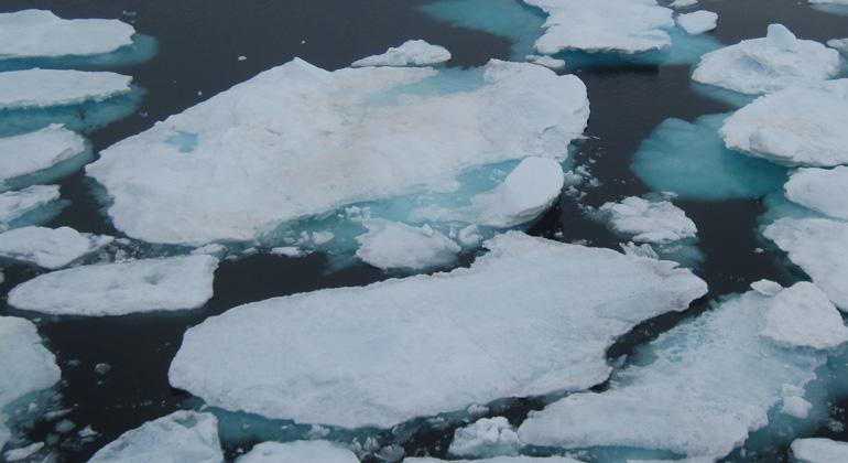 Bigi Alt | Meereis in der Arktis schmilzt