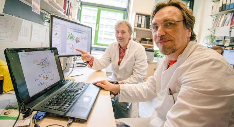 RUB, Marquard   Martin Winkler (rechts) und Thomas Happe (links) haben einen flüchtigen Zwischenzustand eines Enzyms dingfest gemacht.