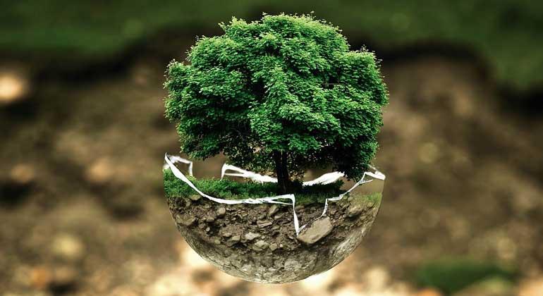 pixabay.com | photoshopper24 | Die blinde Fixierung auf Wirtschaftswachstum zerstört unsere Lebensgrundlagen.