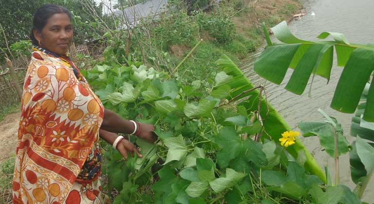 ANDHERI HILFE   Basonti Toppo ist eine von vielen Hunderten diskriminierter, extrem armer Frauen in Bangladesch, die ANDHERI HILFE gemeinsam mit der Partnerorganisation BDO fördert, damit sie ihre eigenen Stärken entwickeln und ihre Rechte nutzen können.