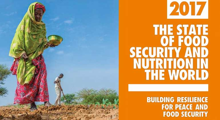 fao.org | 815 million people now hungry – Millions of children at risk from malnutrition