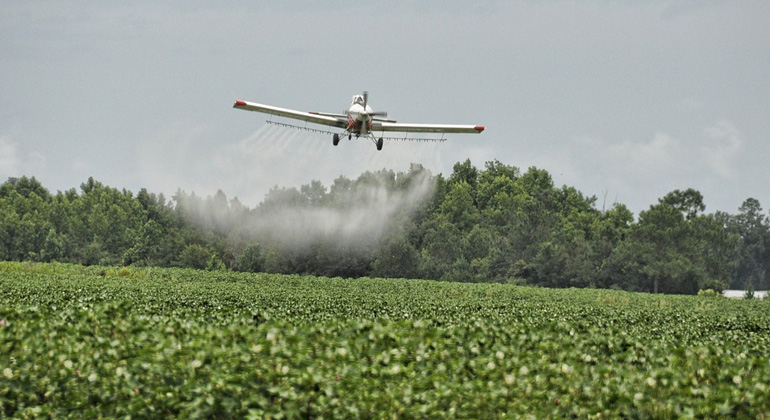 EU countries should use pesticides more sustainably