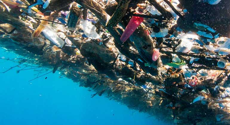 Caroline Power Photography | Eine Unterwasser-Ansicht des Plastikmülls