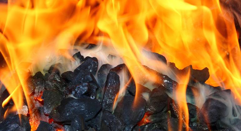 pixabay.com | ChristopherPluta | Die Grünen sollten lieber Neuwahlen riskieren, anstatt Kohleausstieg und Verkehrswende auf dem Scheiterhaufen der Koalitionsgespräche zu verbrennen.