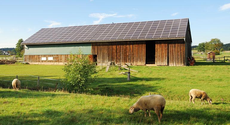 Agro-Photovoltaik ins EEG: Agrar- und Energiewende vereinen