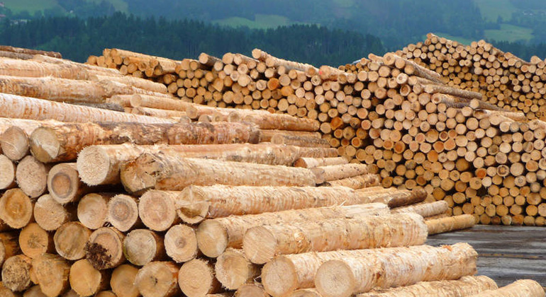 Cascade utilisation is also positive for wood