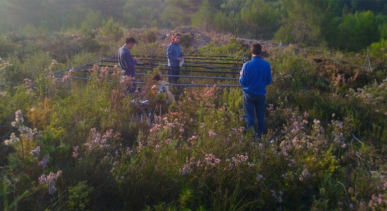 Universität Tübingen | Josep Peñuelas | In automatisierten Unterständen im Garraf National Park bei Barcelona wurden Pflanzen erhöhter Trockenheit oder erhöhten Temperaturen ausgesetzt.
