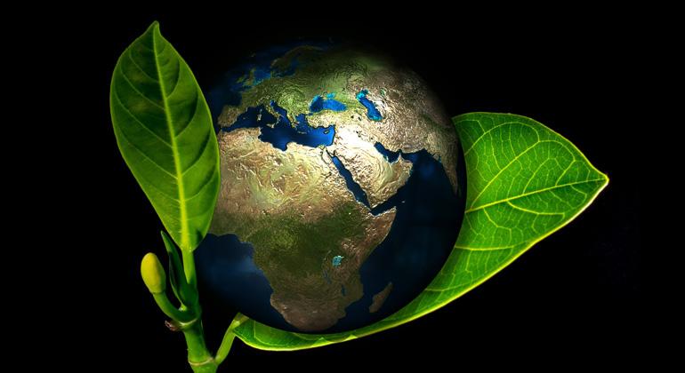 pixabay.com | geralt | Wahrscheinlich ist unsere Zukunft gar nicht so gefährdet wie sie von Apokalypse-Propheten und Zukunfts-Gurus beschrieben wird. Die jetzt anstehende grüne Revolution wird immense ökonomische, politische, kulturelle und wissenschaftliche Energien freisetzen.