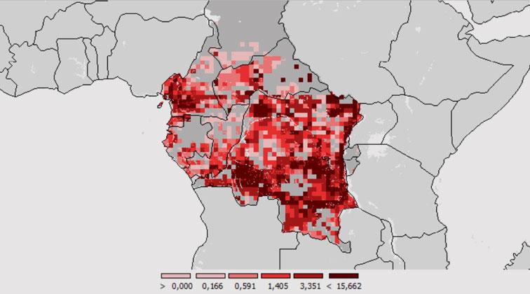 IIASA | Institut für Angewandte Systemanalyse IIASA | Prognostizierter Verlust an Waldfläche bis 2030 (in 1000ha). Simulation mit GLOBIOM.