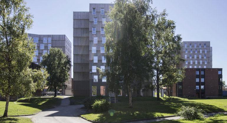 MDH Arkitekten / Holzbau ist auch immer mehrgeschossigen Wohnbau immer mehr im Kommen.
