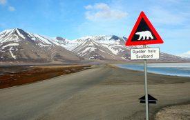 WikimediaCommons| Sprok | Spitsbergen