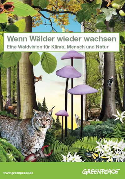 greenpeace.de | Studie: Die Zukunft des deutschen Waldes ist ein naturnaher Wald, in den wir seltener und behutsam eingreifen. Nur noch einzelne Bäume und Baumgruppen werden geerntet, möglichst schonend für Boden und Tierwelt. Einige Bäume dürfen sogar so alt werden, dass sie natürlich sterben können und sich dann in wahre Schatzkammern des Lebens verwandeln, für Pilze, Käfer, Fledermäuse und Vögel. Bald gibt es somit in deutschen Wäldern wieder mehr Artenvielfalt.