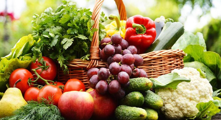 UN-Studie: Fleischkonsum ist Haupttreiber der Naturzerstörung