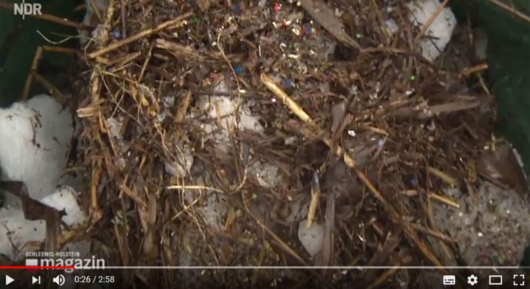 NDR | Schleswig-Holstein Magazin vom 09.03.2018 - Plastik in der Schlei: Helfer machen sauber