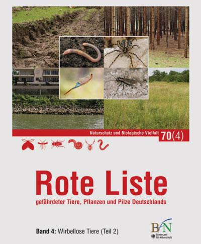 bfn.de | Die Roten Listen zeigen: Die Vielfalt der Insekten schwindet.