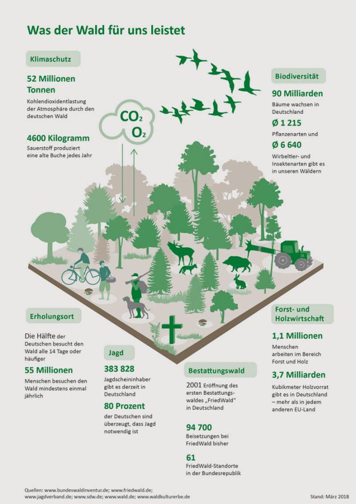 friedwald.de | Seit 1971 ist der 21. März der Tag des Waldes. Er wurde von der Food & Agriculture Organization of the United Nations (FAO) als Reaktion auf die globale Waldvernichtung ins Leben gerufen, um auf die Bedeutsamkeit des Waldes aufmerksam zu machen.