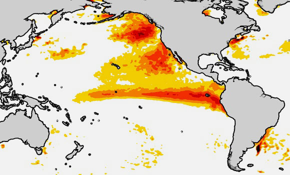 dal.ca | Photo provided by Eric Oliver | Ocean surface temperature anomalies during the summer of 2015.