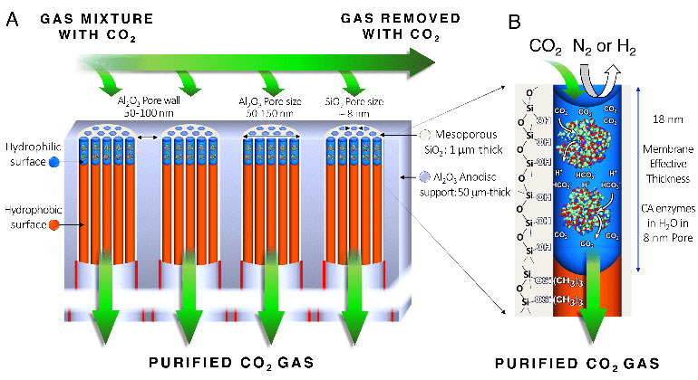Sandia National Laboratories | Prinzipskizze der Kohlendioxid-Entfernung