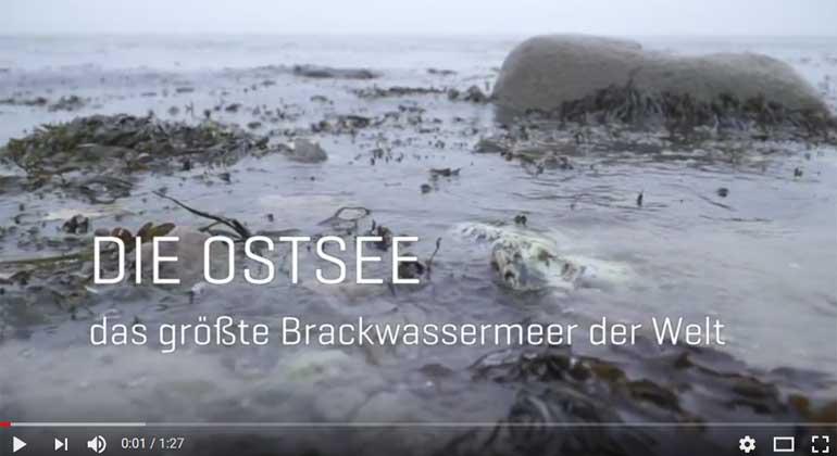 GEOMAR KIEL | Screenshot | Plädoyer für die Nutzung des Randmeers als Modellregion für den Weltozean