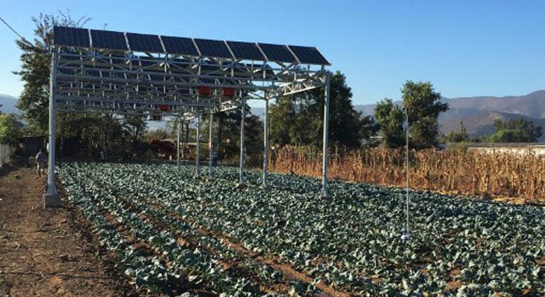 ise.fraunhofer.de   Fraunhofer Chile   In Chile wurde in drei Pilotanlagen, wie hier in Curacaví, u.a. die Kombination von Photovoltaik und Gemüseanbau getestet.