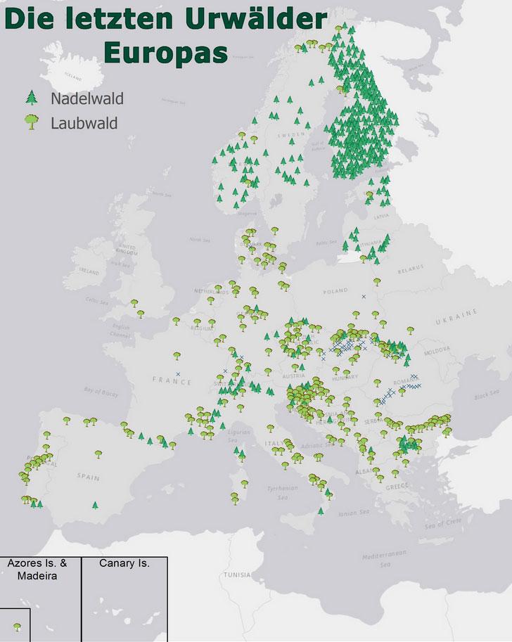 Esri, HERE, Garmin, OpenStreetMap contributors, and the GIS user community | Übersichtskarte über die letzten Urwälder in Europa (vereinfachte Darstellung + zum Vergrößern anklicken)