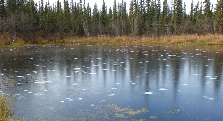 awi.de | Guido Grosse | Methanblasen im Eis eines Thermokarstsees in Fairbanks