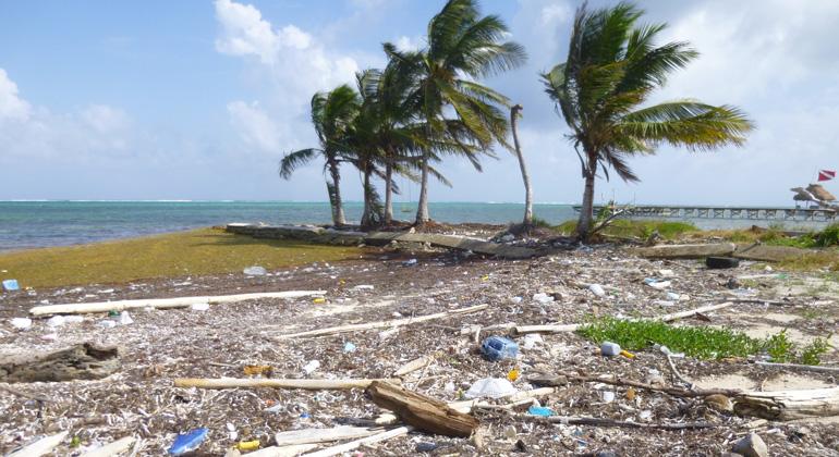 Plastik und anderer Müll am Strand von Belize | A. Varrasquinho