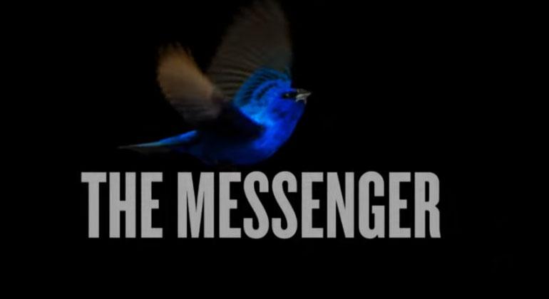SongbirdSOS-Film | Screenshot | The Messenger