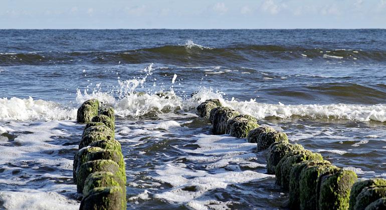 pixabay.com | Arcaion | Bundesumweltministerium: Deutschland untersagt bestimmte Formen des marinen Geo-Engineerings zu kommerziellen Zwecken