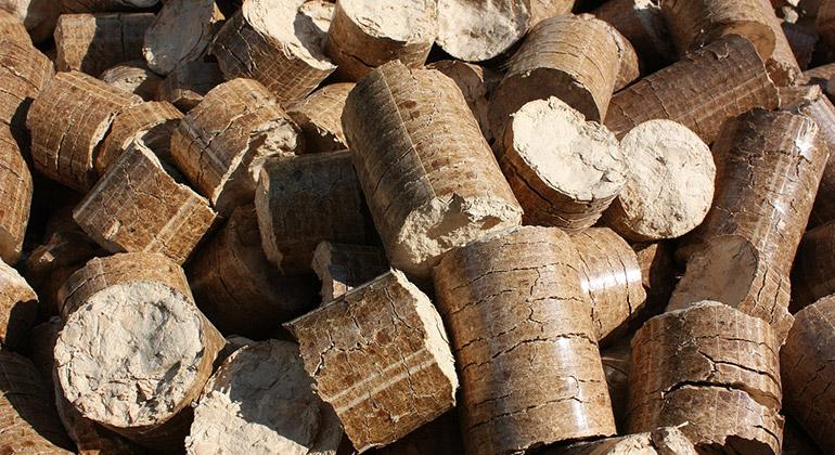pixabay.com   moses   Die Nutzung von Holzenergie auf Basis einer nachhaltigen Forstwirtschaft schützt einerseits die Waldbestände und trägt andererseits unmittelbar dazu bei, die hohen CO₂-Emissionen von fossilen Brennstoffen zu vermeiden.