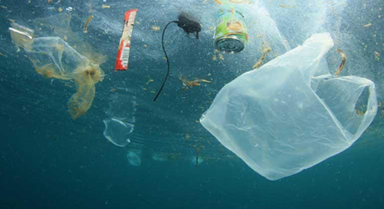 Fotolia.com | RichardCarey | Besondere Sorge bereitet der Naturschutzorganisation die weltweit wachsende Plastikflut in den Ozeanen.