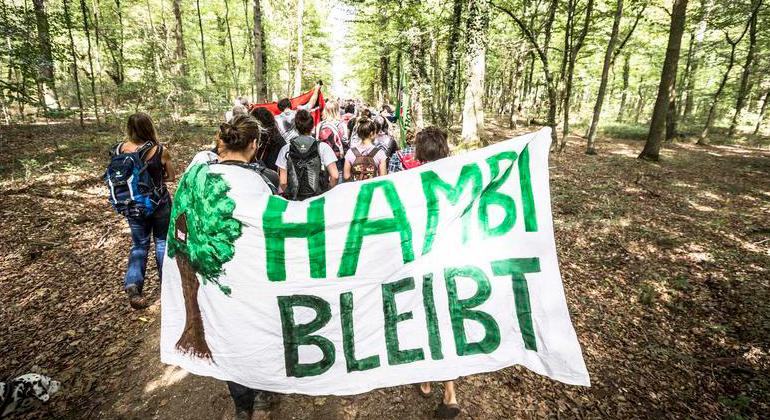 Bernd Lauter | Greenpeace | 20.000 Menschen werden zur Demonstration für den Erhalt des Hambacher Waldes erwartet - der Kohlekonzern RWE blockiert den legitimen Protest.