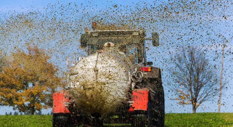 Depositphotos | ginasanders | Bakterien, die gegen Antibiotika resistent sind, verbreiten sich über Gülle in Gewässern. Greenpeace fordert systematische Kontrollen und eine artgerechte Tierhaltung.