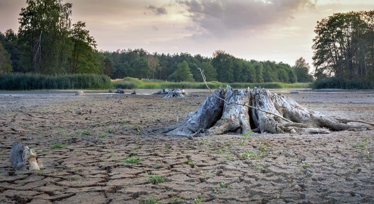 pixabay.com | Seaq68 | Die große Trockenheit im Jahr 2018 hat deutschlandweit zu Wassermangel in den Flüssen geführt.