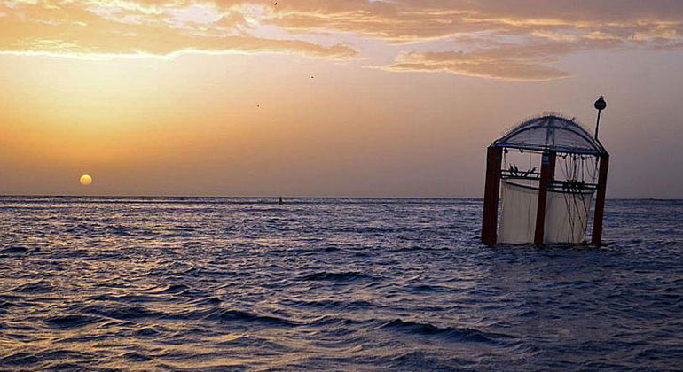 Michael Sswat/GEOMAR, CC BY 4.0 | Seit Jahren führt das GEOMAR Helmholtz-Zentrum für Ozeanforschung aus Kiel weltweit Untersuchungen durch, hier zu Auswirkungen der Ozeanversauerung auf Ökosysteme im nährstoffarmen offenen Ozean.
