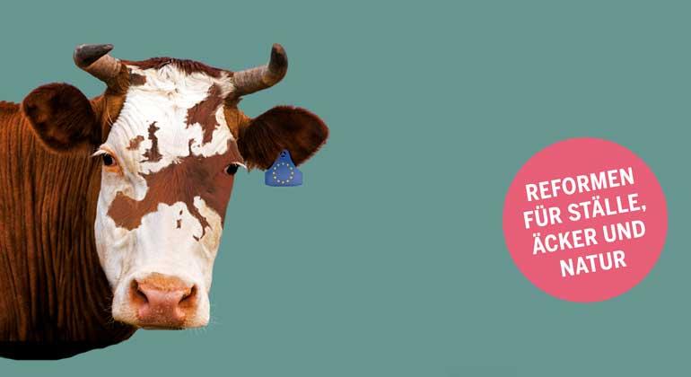 BUND | Agraratlas 2019 | Durch die EU-Agrarpolitik werden jährlich fast 60 Milliarden in Europas Landwirtschaft gesteckt. Das sind 114 Euro pro EU-Bürger*in im Jahr. Der Agrar-Atlas zeigt, dass kaum etwas von dem Geld den Zielen zugutekommt, die den Europäer*innen wichtig sind.