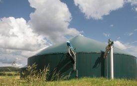 Fotolia.com | IngoBartussek | Biogasanlage: Auch sie reduziert Resistenzen nicht