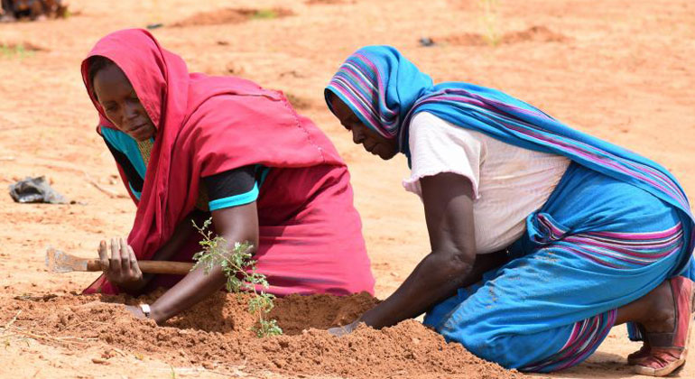 United Nations | The project clearly demonstrated that in the context of climate change, natural resources are a strong entry point for women's inclusion in peacebuilding and that incorporating women can lead to sustained peace.