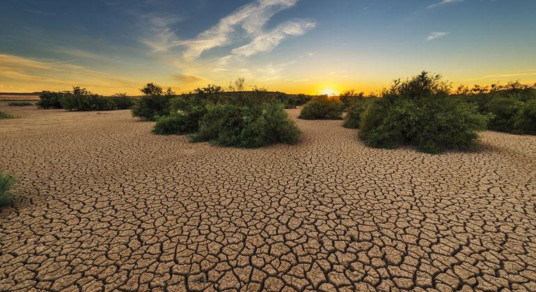 pixabay.com   josealbafotos   Hitze und Kälte, Starkregen und Trockenheit: in den letzten Jahren gab es viele Wetterextreme.